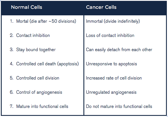 whats difference between cancer cell and normal cell Often the cells can be cancerous cells that have not yet metastasized  what is  the difference between a benign and malignant tumour.